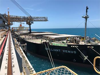 【写真2】アボットポイント港での当社向け強粘炭船積みの様子